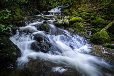 photos of Lake District - Stock Ghyll Force