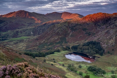 photos of Lake District - Lingmoor fell