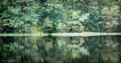 photography spots in Lake District - Yew Tree tarn