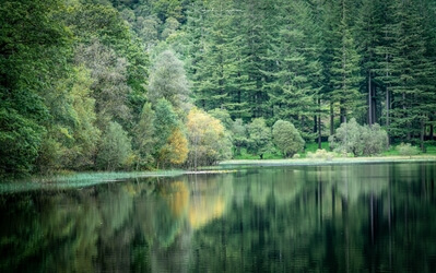 pictures of Lake District - Yew Tree tarn