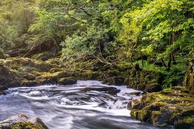 pictures of Lake District - Skelwith Force and Woodburn Bridge