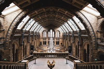 images of London - Natural History Museum