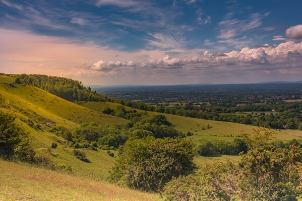 Ditchling Beacon (north side)