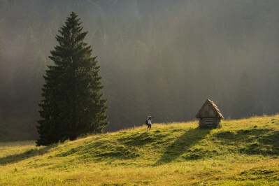 Triglav National Park photography locations - Planina Blato (Mountain Pasture Blato)