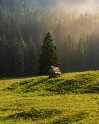 images of Triglav National Park - Planina Blato (Mountain Pasture Blato)
