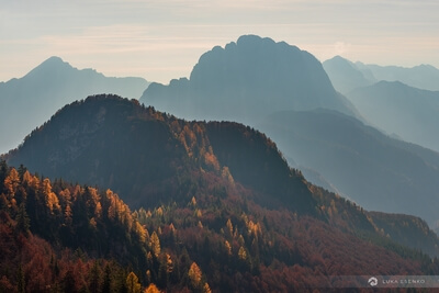 photos of Triglav National Park - Alpine Road & Larch Trees