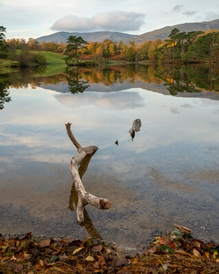 images of Lake District - Tarn Hows, Lake District