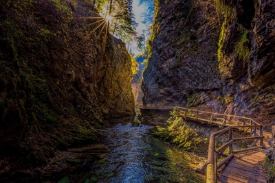 photos of Triglav National Park - Vintgar Gorge