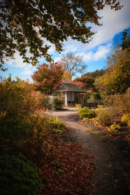 pictures of South Wales - National Botanic Garden of Wales
