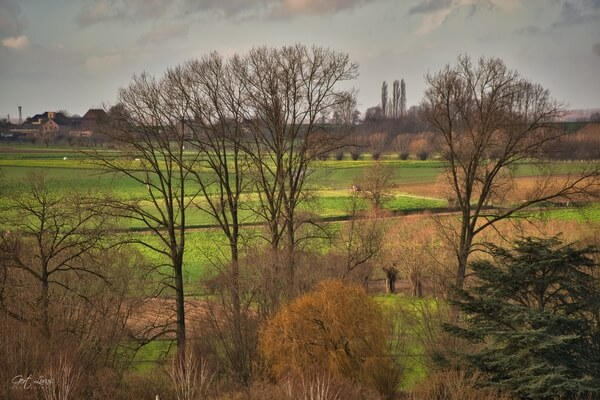 Sloping Hills of Pajottenland - view towards Waarbeke church