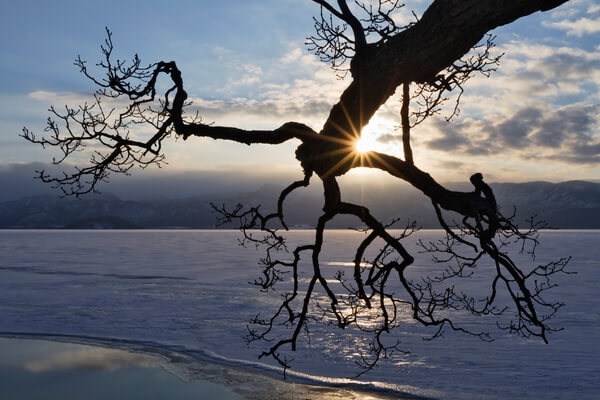 Sillhouetted branch on the edge of a Frozen Lake Kussharo