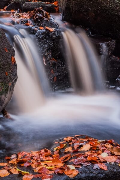 Padley Gorge Autumn Abstract