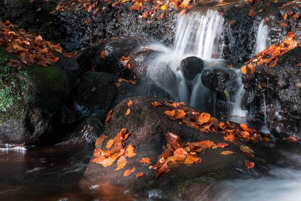 Padley Gorge Autumn Colours
