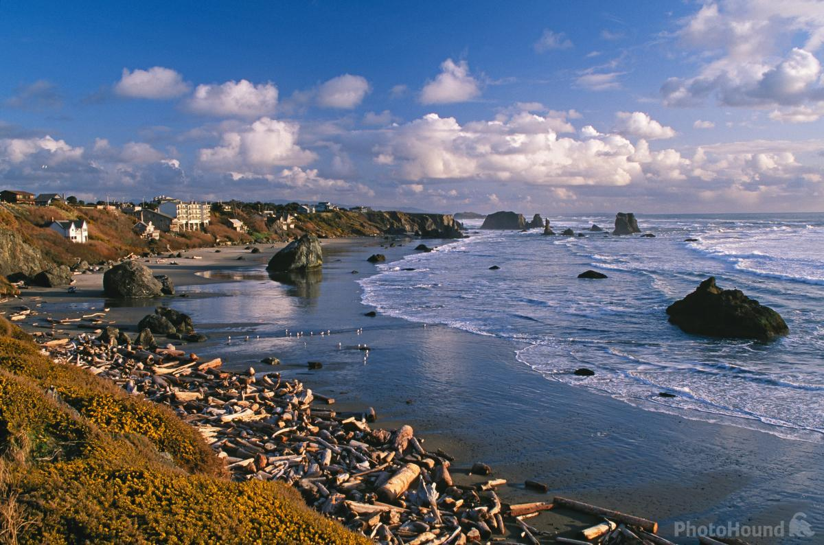 View from Coquille Point stairs
