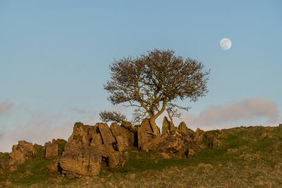 photo spots in Derbyshire - Roystone Rocks