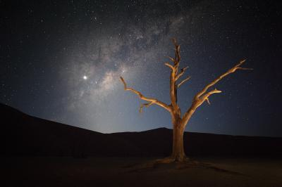 images of Sossusvlei - Deadvlei – Night Time Photos