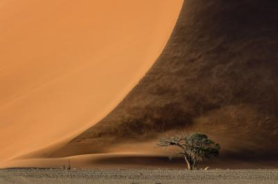 images of Sossusvlei - Dunes – General Info