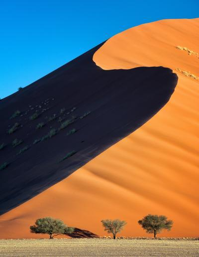 pictures of Sossusvlei - Three Tree Dune