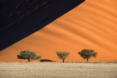 images of Sossusvlei - Three Tree Dune