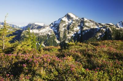 images of North Cascades - Copper Mountain Lookout