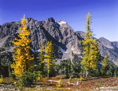 images of North Cascades - Harts Pass