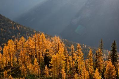images of North Cascades - Cutthroat Pass