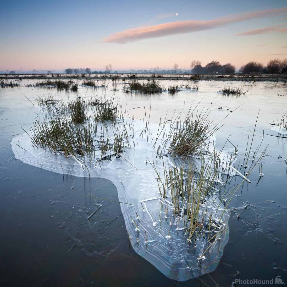 Icy Somerset Levels