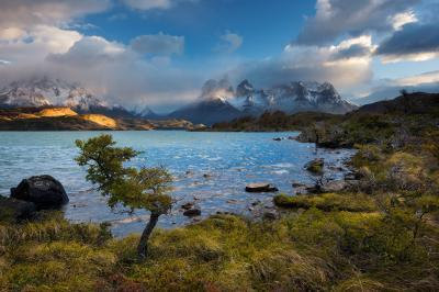 Picture of Torres del Paine (TdP) General Info - Torres del Paine (TdP) General Info