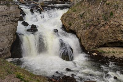 pictures of Yellowstone National Park - Firehole Falls