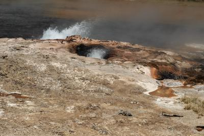 images of Yellowstone National Park - FLD - Steady Geyser