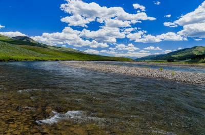 pictures of Yellowstone National Park - Lamar River/Valley