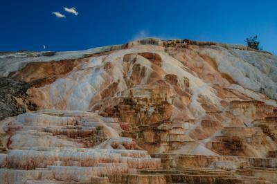 pictures of Yellowstone National Park - Mammoth Hot Springs (MHS) General