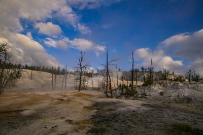 images of Yellowstone National Park - MHS - Angel Terrace