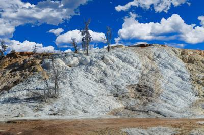 pictures of Yellowstone National Park - MHS - Palette Springs