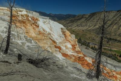 photos of Yellowstone National Park - MHS - Canary Spring