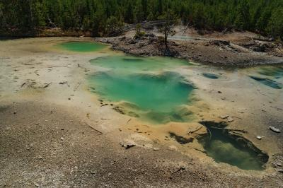 pictures of Yellowstone National Park - NGB - Dishwater Spring