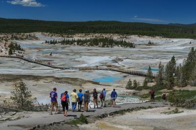 pictures of Yellowstone National Park - Norris Geyser Basin (NGB) General