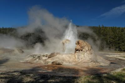 images of Yellowstone National Park - UGB - Grotto Geyser
