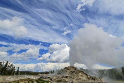 pictures of Yellowstone National Park - UGB - Castle Geyser
