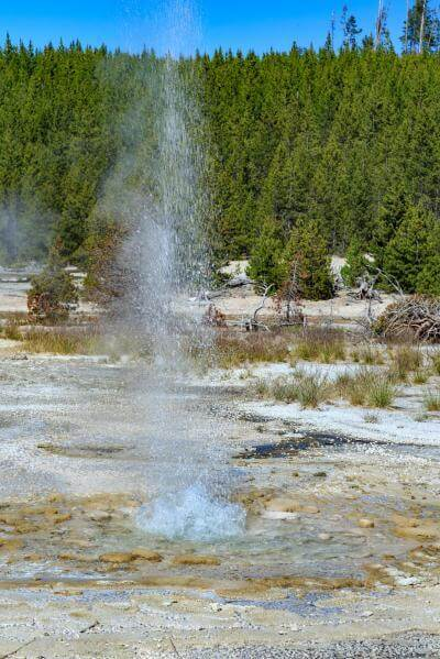 photos of Yellowstone National Park - NGB - Vixen Geyser