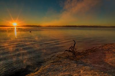 photos of Yellowstone National Park - WTGB - Yellowstone Lake
