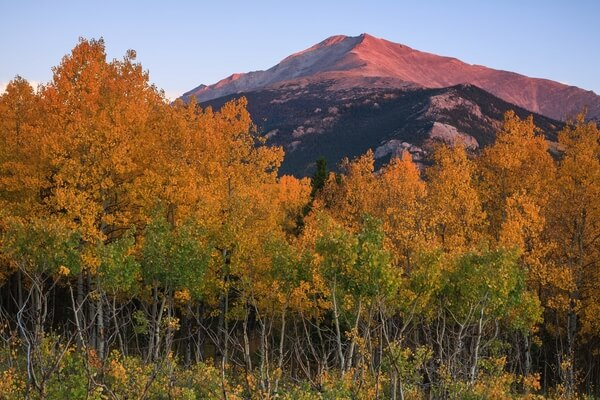 Allenspark - Autumn, Mt. Meeker