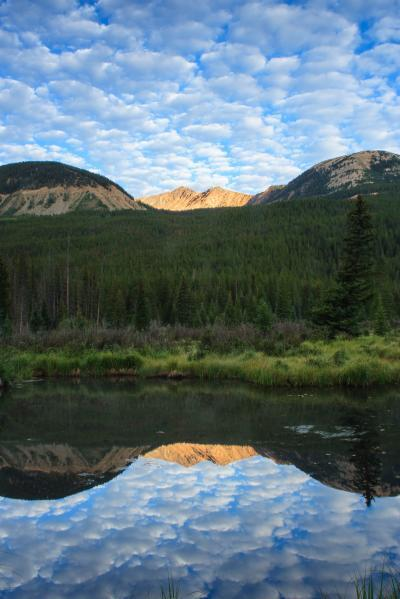 photography spots in Rocky Mountain National Park - WR - Beaver Ponds