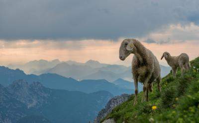 photo locations in Triglav National Park - Mangart Saddle