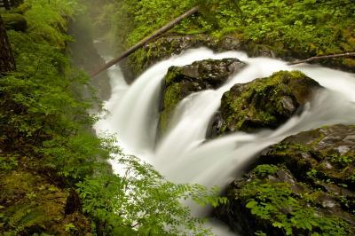 photo spots in Olympic National Park - Sol Duc Falls