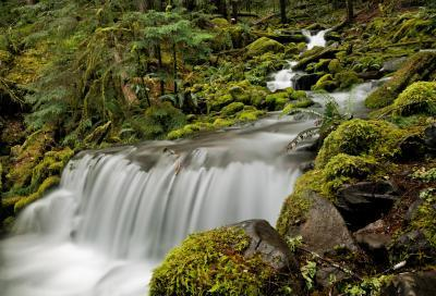photos of Olympic National Park - Sol Duc Falls