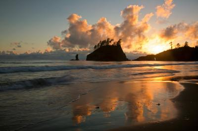 pictures of Olympic National Park - Second Beach