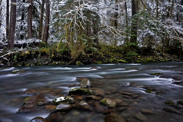 North Fork Sol Duc River
