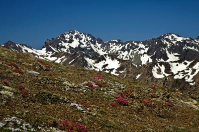 Olympic National Park photo locations - Marmot Pass