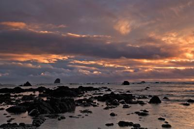 photography locations in Olympic National Park - Cape Alava – Sand Point Loop